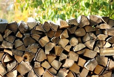 Арестуваха мъж на 25 г. в Златарица, бил по главата съсед заради дърва
