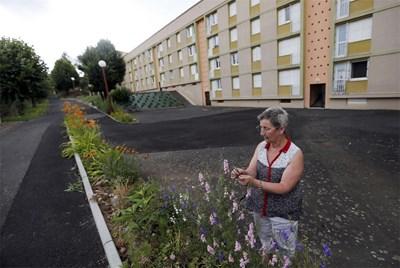 Жена сади цветя пред социално жилище във Франция.   СНИМКА:
