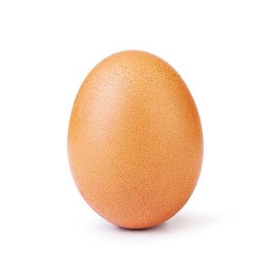 СНИМКА: Инстаграм/ world_record_egg