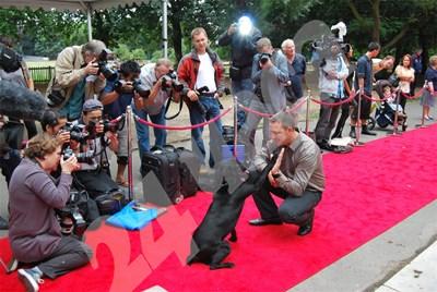 """Кучето герой Трио получава поздрави от водача си, след като е наградено с медала """"Дикин"""" на червения килим през 2010 г. СНИМКА: 24 часа"""