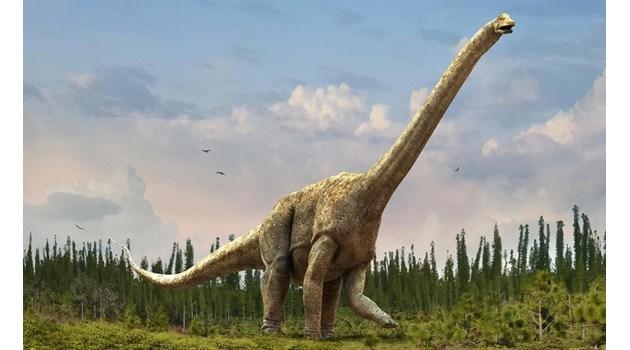 В България се е разхождал най-големият динозавър. Кости от него са открити край Трън