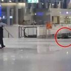 Суматоха на летището във Франкфурт (Обновена, видео)