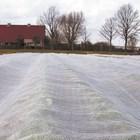Покривалото Arricover е перфектно за почти всички зеленчукови култури от пролетния спектър