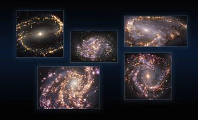 Звезди Снимка: ESO / PHANGS