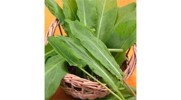 Богатите на желязо листни зеленчуци борят пролетната умора