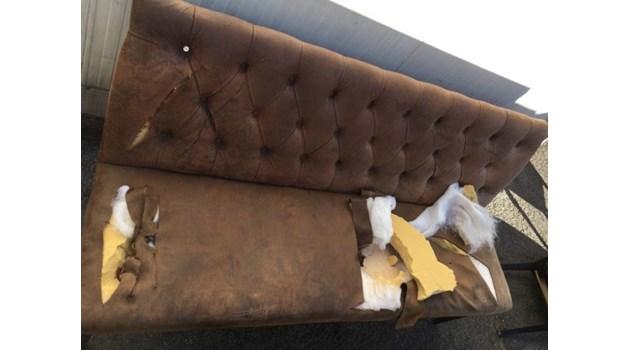 Поръчалият погрома в столичен бар - кикбоксьор, тръгнал от Първа частна банка
