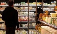 10 хиляди тона фалшиво сирене и кашкавал годишно на пазара у нас