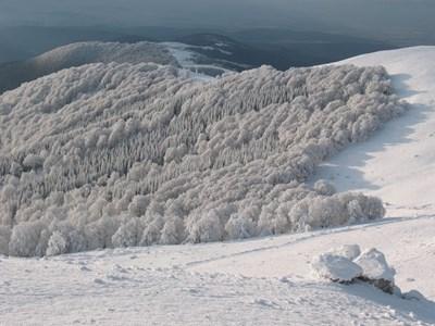 Снимка: planina.e-psylon.net/
