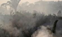 Прогноза: До 2030 г. Амазония ще се прости с 1/4 от горите си. Местните вярват, че там живее тайнствено същество