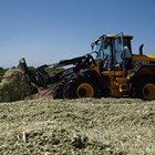 Как товарачът JCB 427 AGRI се справя с подготовката на силажа в силажната яма?