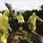 Мъже в защитни облекла погребват умрял от ебола в Гвинея.