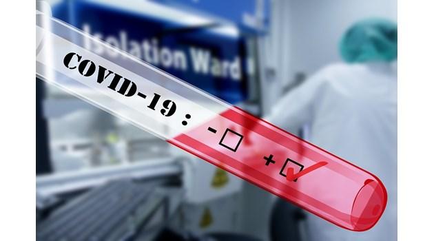 Болните бъбреци удвоят риска от смърт при COVID-19