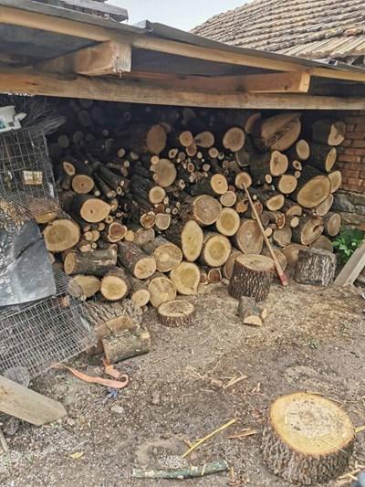 Част от незаконните дърва в двор на къща