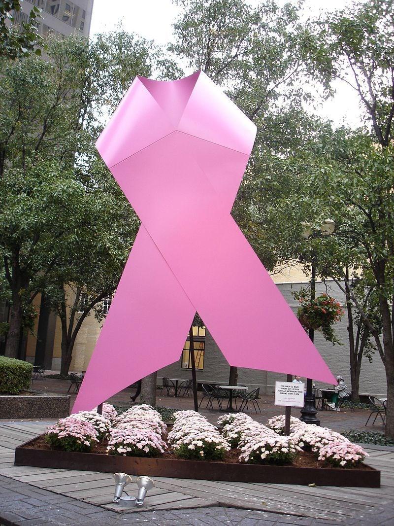 Розовата панделка е символ на борбата с рака на гърдата в целия свят.