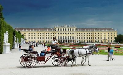 Традиционна карета вози туристи пред една от емблемите на Виена - двореца Шонбрун. СНИМКА: РОЙТЕРС