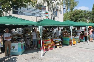 Всяка година в Царево през август се провежда фестивал на мановия мед. СНИМКА: Елена Фотева