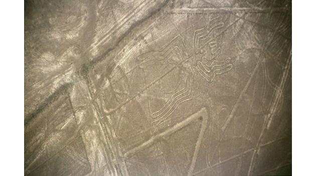 С дрон откриха нови мистериозни фигури в Наска и Палпа