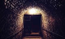 """Какво има в мазето на """"Свети Стефан"""" във Виена. Хора със слаби нерви и деца да не гледат!"""