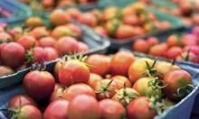 Цените на храните на едро - със 7% понижение