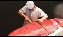 Японски майстори на ножа