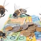 """Мярка """"Агроекология и климат"""" ще подпомага и пчелари в новия програмен период"""