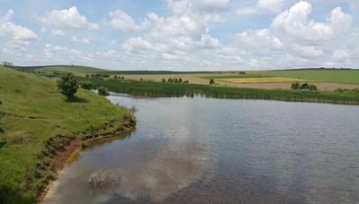 Екоинспекцията във Велико Търново отложи ремонт на язовир, заплашвал гнездящи птици