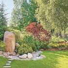 Акценти в градината