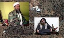 5 прилики в ликвидирането на Ал Багдади и Осама бин Ладен