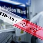 14 нови случаи на COVID-19 във Варна, заразените между 23-59 години