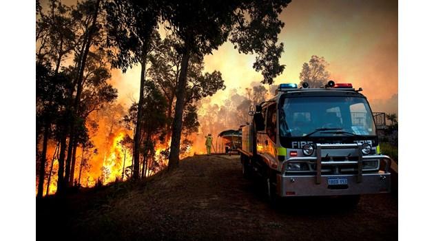 24-ма в ареста заради пламтящата Австралия