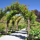 Идеи за градински арки