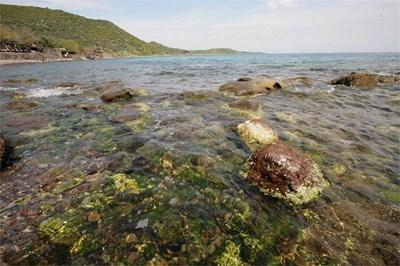 Остров Гьокчеада има 95 км крайбрежие, подходящо за риболов или сърф. СНИМКИ: АВТОРЪТ И ГЕРГАНА НИКОЛОВА