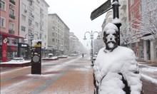 Сняг натрупа не на шега в столицата - тъжно за деца и скиори (Снимки)