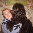 Пуделът е невероятно предано куче, което е много чувствително към вниманието, което му отделят
