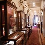 """Така изглежда детският коридор в двореца """"Врана"""", в който във витрини са събрани тетрадки, книжки, писма, играчки и дрешки на цар Борис III и децата му Симеон II и Мария Луиза.  СНИМКИ: ВЕЛИСЛАВ НИКОЛОВ"""