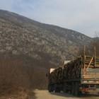 Валежите в последните седмици затрудняват извозването на дървата от складовете.
