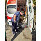 Общинската аварийна дирекция в София спаси сърничка