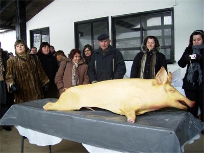 Русенското село Иваново отбелязава празника си с прясно заклано прасе и приготвена на място кървавица.  СНИМКА: НЕЛИ ПИГУЛЕВА