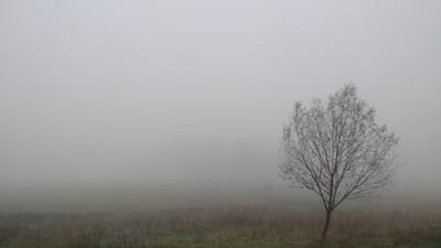 Замърсяването достигна 313 микрограма на кубичен метър в община Лисиче, а и в останалите скопски общини СНИМКА: Pixabay