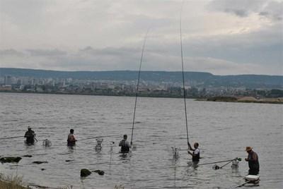 Смели риболовци ловят на захранка с хляб платерини в новия канал море-езеро във Варна СНИМКА: Цанко Цанев