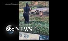 Жена гостува на лъв в зоопарк