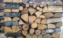 Полицаи и горски спряха пет каруци с незаконни дърва за огрев в Монтана