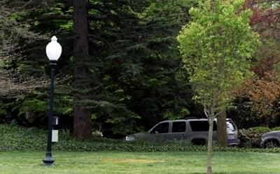 На мястото на жълтото петно беше дръвчето, което посадиха Тръмп и Макрон през април миналата година СНИМКА: Ройтерс