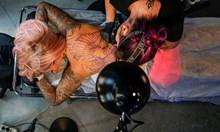 Живакът в татуировките отключва алергии