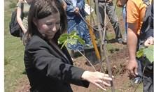 Рехабилитатор одобрява земеделски проекти
