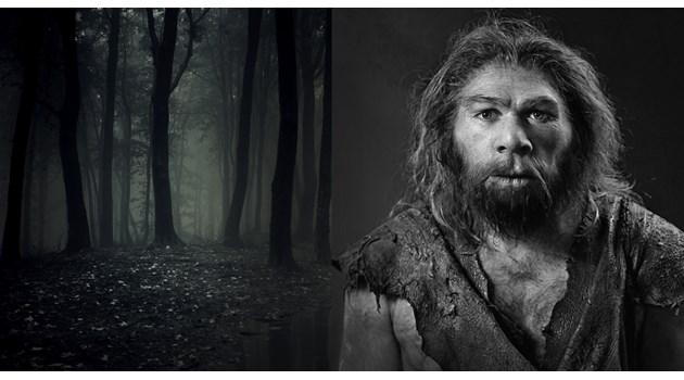 Хомо сапиенс vs. неандерталците: 9 разлики за победата на по-слабите