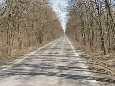 Пътят Исперих - Разград СНИМКА: Google Street View