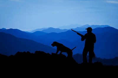 На лов Снимка: Пиксабей