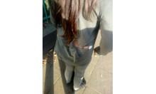 Домашно псе нахапа момиче до училище (Обзор)