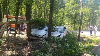 Автомобилите са изхвърчали от пътя и са се забили в дърветата. Снимки:МВР